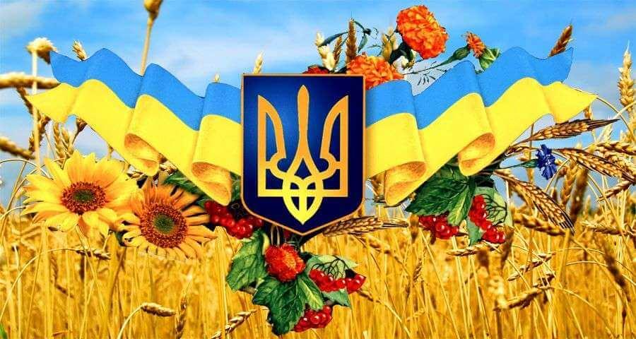 график работы компании Амика на День Независимости Украины